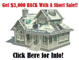 Generic - Money House Large $3000.jpg