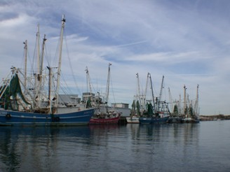 shrimp boats edited3.jpg