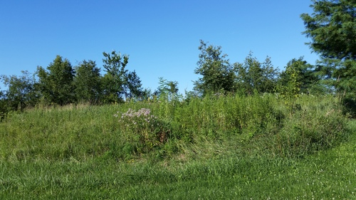 North Country Community Lot #15     1.45 Acres